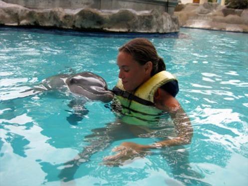 manusia dan lumba-lumba